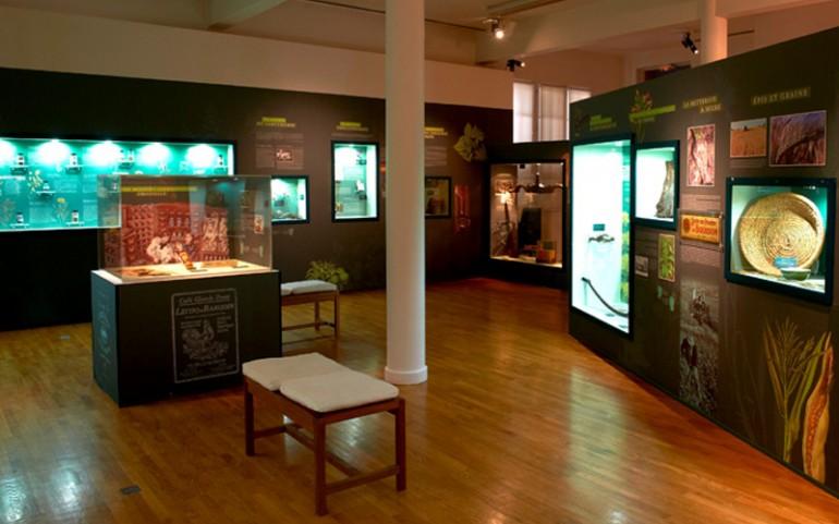 Scénographie Museum Henri-Lecoq
